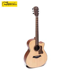 Các góc ảnh của Đàn Guitar Acoustic Taylor T350 Website : thegioiguitar.com.vn Hotline : 0865 888 685