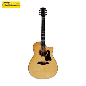 Các góc ảnh của Đàn Guitar Acoustic Taylor T550C Gỗ Còng Website : Thegioigu itar.com.vn Hotline : 0865 888 685