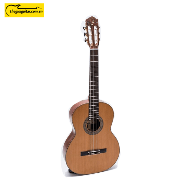 Các góc ảnh của Đàn Guitar Classic C-350 Body Website : Thegioiguitar.com.vn Hotline : 0865 888 685