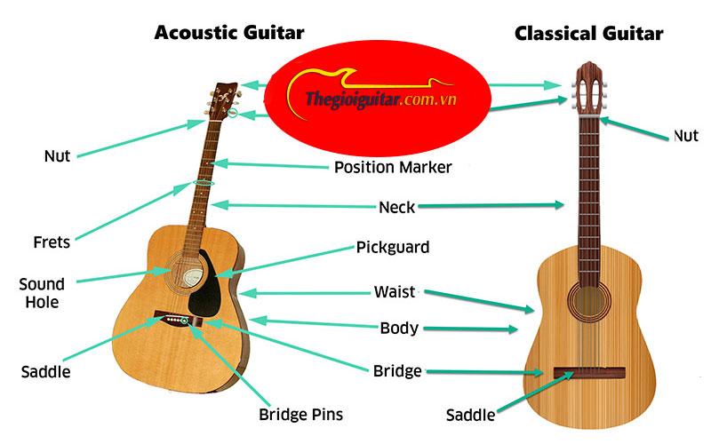 Điểm giống và khác nhau giữa đàn guitar classic và acoustic