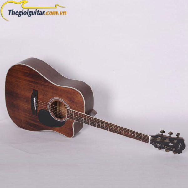 Guitar Mantic AG10SC