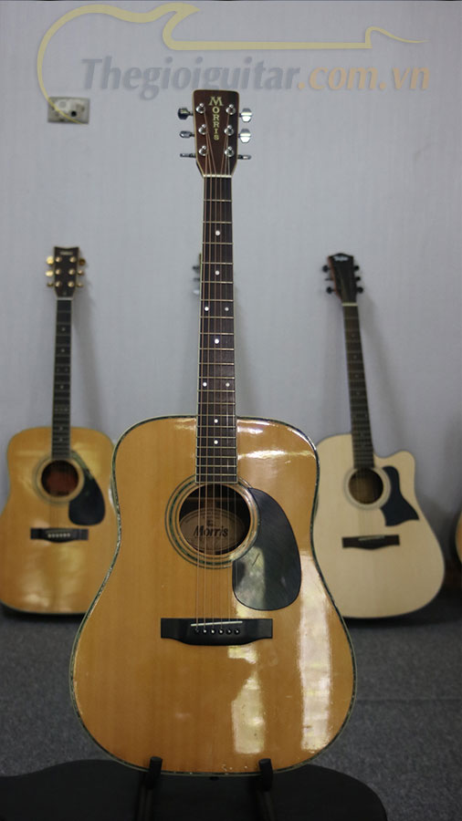 Guitar Acoustic Seconhand Morris W-35