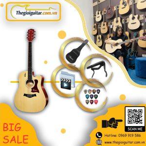Guitar Rosen R135
