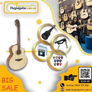 guitar takla m320
